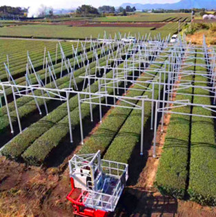 Photovoltaic Farmland Mounting System in Japan-100KW